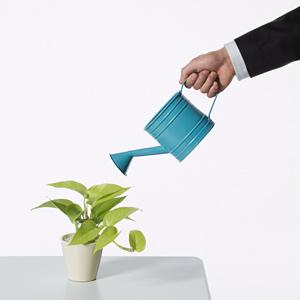 lead-nurturing-inbound-marketing
